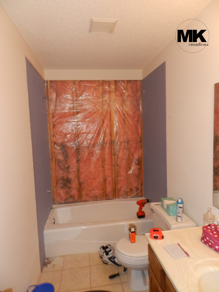 Our first diy project how we tackled mold in the bathroom for Diy bathroom demolition